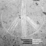 Peace book cover
